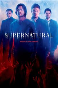 Supernatural Season 1-13 DVD Box Set