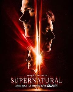 Supernatural Season 14 DVD Box Set